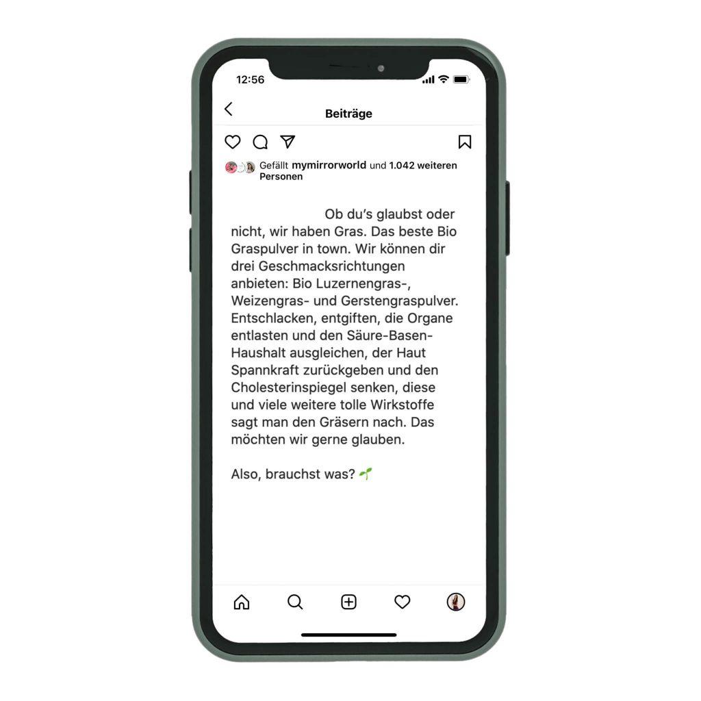 ReschCommunications Content Marketing Agentur Graz und Steiermark Text Agentur Referenz
